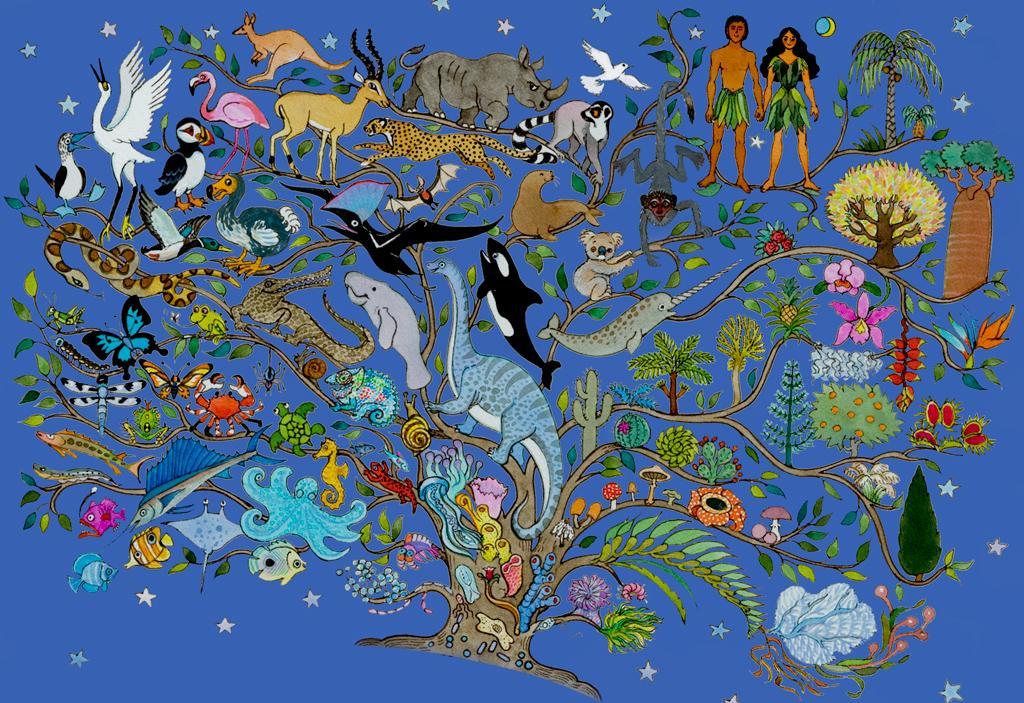 evolution of life - 1024×703